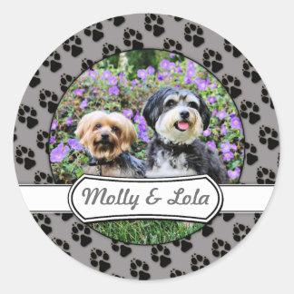 Havanese - Lola & Yorkie - Molly Round Sticker
