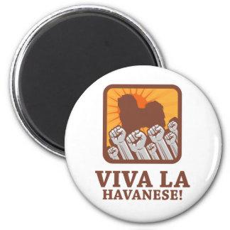 Havanese Magnet
