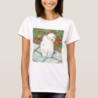 Havanese n Poppies Art Print Gifts & Cards T-Shirt