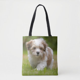 Havanese Puppy (8.5 Weeks) Tote Bag