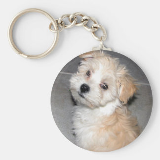 Havanese Puppy Key Ring