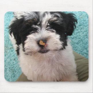 Havanese Puppy Mouse Mat