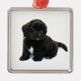 ***Havanese Puppy*** Ornament