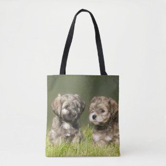 Havanese Puppys (7 Weeks) Tote Bag