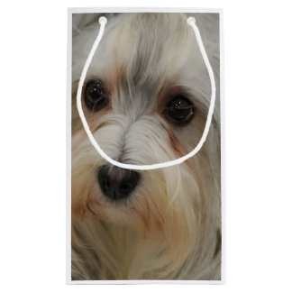 Havanese Small Gift Bag