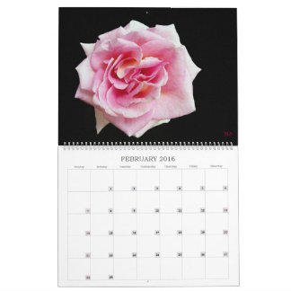 Have a Colorful Year Wall Calendar