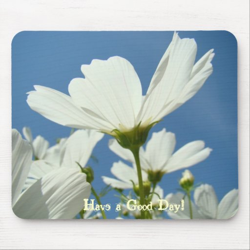 HAVE A GOOD DAY! Mousepad White Daisy Flowers