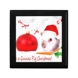 Have a Guinea Pig Christmas Gift Box