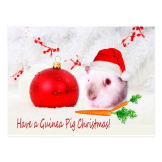 Have a Guinea Pig Christmas Postcard