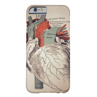 Have a Heart iPhone 6 case