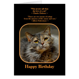 Have a meow-velous Birthday Tortoiseshell Cat Note Card