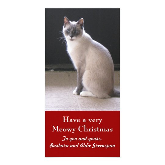 Have a Meowy Christmas Cat Pet Holiday Photo