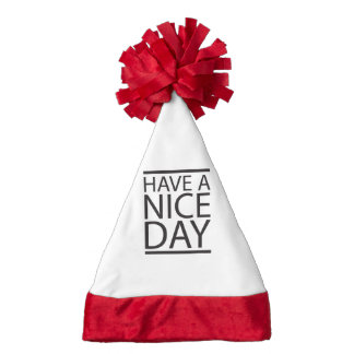 Have a Nice Day Santa Hat