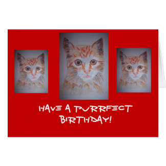 Have a Purrrfect Day Card