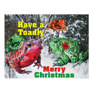Have a Toadly Merry Christmas Postcard
