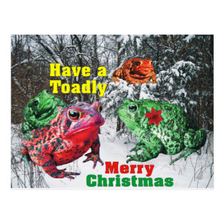 Have a Toadly Merry Christmas Snowy Post Card