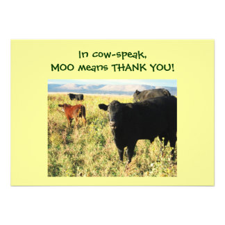 Have You Herd Calves - Western Thanks Baby Gift Invitations