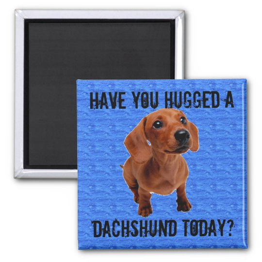 Have you hugged a Dachshund today? Square Magnet