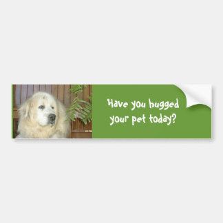 Have you hugged your pet today? car bumper sticker