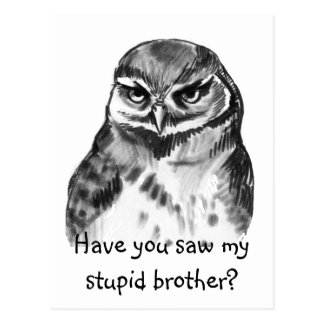 Have you saw my stupid brother - burrowing owl postcard
