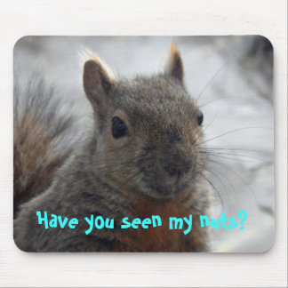 Have you seen my nuts? mouse pad
