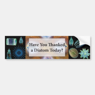 Have You Thanked a Diatom Bumper Sticker