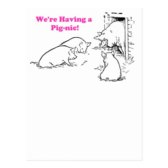 Having a Pig-nic Picnic Funny Pig Cartoon Postcard