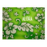 HAWAII ALOHA COLLECTION POSTCARD