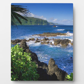 Hawaii Beach Scenery Plaque