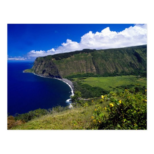 Hawaii Beautiful Beach and Mountains Postcard