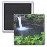 Hawaii, Big Island, Hilo, Rainbow Falls, Lush Square Magnet