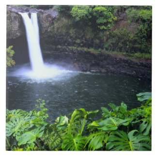 Hawaii, Big Island, Hilo, Rainbow Falls, Lush Tile