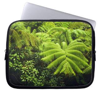 Hawaii, Big Island, Lush tropical greenery in 2 Laptop Sleeve