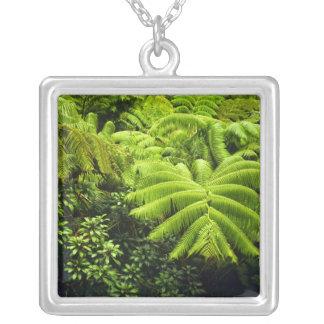 Hawaii, Big Island, Lush tropical greenery in 2 Necklace