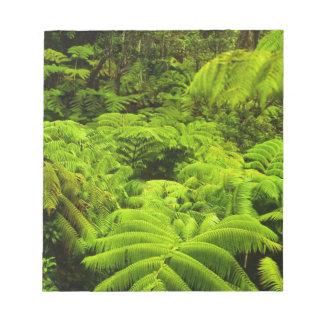 Hawaii, Big Island, Lush tropical greenery in Notepad
