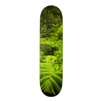 Hawaii, Big Island, Lush tropical greenery in Skateboard