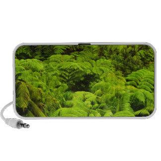 Hawaii, Big Island, Lush tropical greenery in Travel Speaker