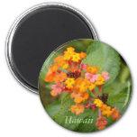 Hawaii Flower 6 Cm Round Magnet