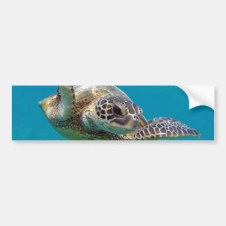 Hawaii Green Sea Turtle - Honu Bumper Sticker