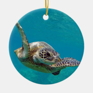 Hawaii Green Sea Turtle - Honu Round Ceramic Decoration