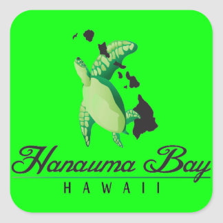 Hawaii Green Sea Turtle Square Sticker