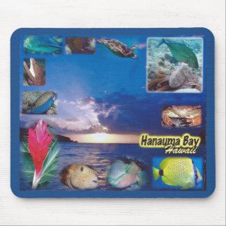 Hawaii Hanauma Bay Marine Life Mouse Mat