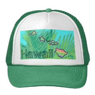 Hawaii hawaiian islands palm hat