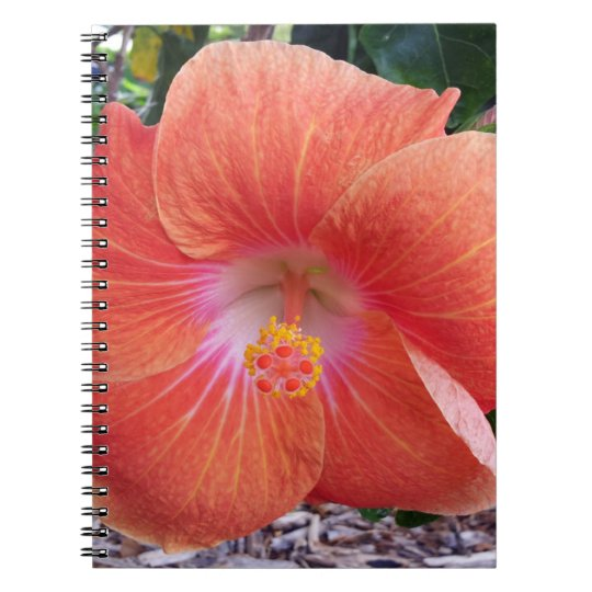Hawaii Hibiscus Flowers Notebooks
