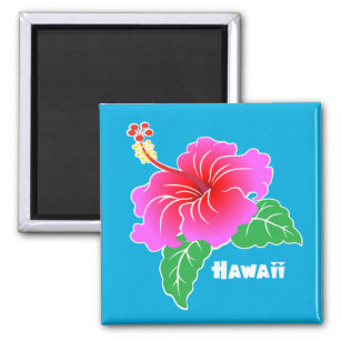 Blue Hawaii Hibiscus Flower Home Furnishings Accessories Zazzle