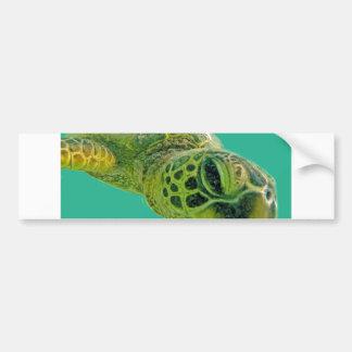 Hawaii Honu Turtle Bumper Stickers