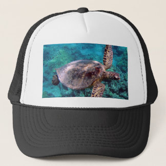 Hawaii Honu Turtle Cap