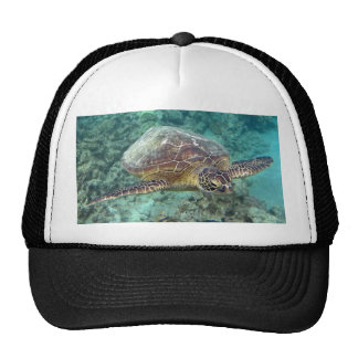 Hawaii Honu Turtle Mesh Hats