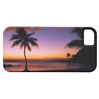 Hawaii Kauai iPhone 5 - Poipu Beach iPhone 5 Case