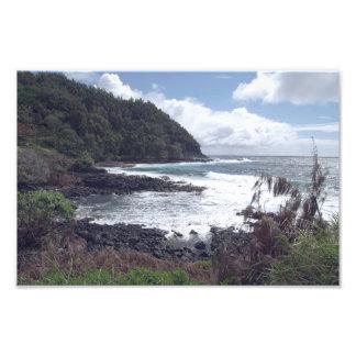 Hawaii Landscape 1 Print